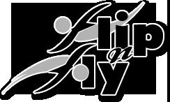 Flip n fly-Final