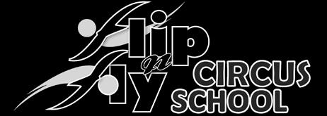 Flip n Fly Circus